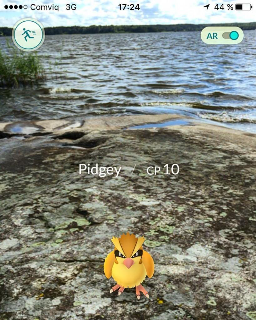 juli5-pokemon-go
